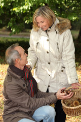 Couple gathering chestnuts in basket