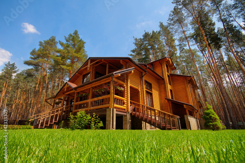 Wooden mansion - 42333305