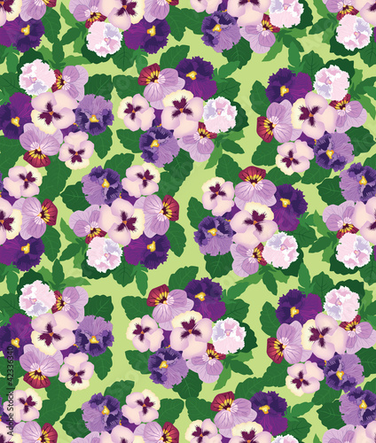 Fototapeta seamless pattern with lilac and violet pansy, background