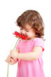 cute little girl smelling flower gift, isolated on white