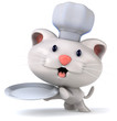 Fun chef cat
