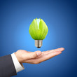 Concept of energy saving light bulbs on Business hand