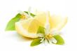 Zitronenspalten