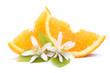 Orangenspalten