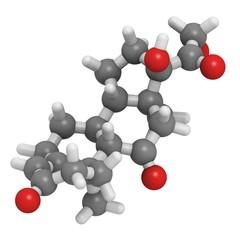 Cortisone