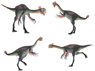 Gigantoraptor Pack