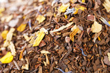 coffee-like, caffeine-infused mate and red rooibos blend, full f poster