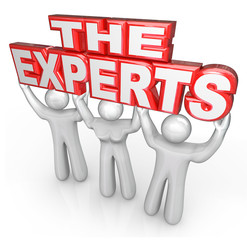 The Experts Professional People Help Solve Problem