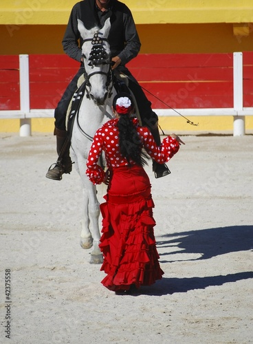 Dressage & flamenco