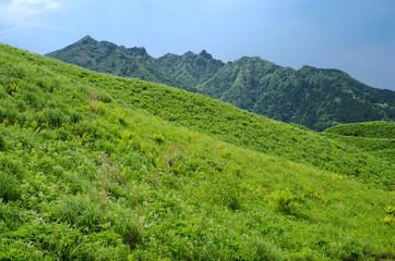 緑の丘と阿蘇の根子岳