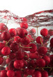 Cherries underwater b