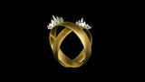 Civil partnership wedding rings animation