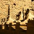 Sphinx from temple Karnak Luxor