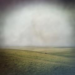 empty landscape
