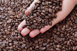 Close up of roasted coffee beans in human hand