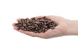Roasted coffee beans in human hand, isolated