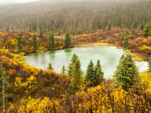 Fall rain on wilderness lake, Yukon T., Canada
