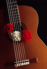 Flamenco guitar_01