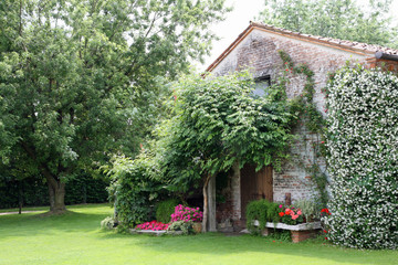 old rural house with garden flowers and Jasmine