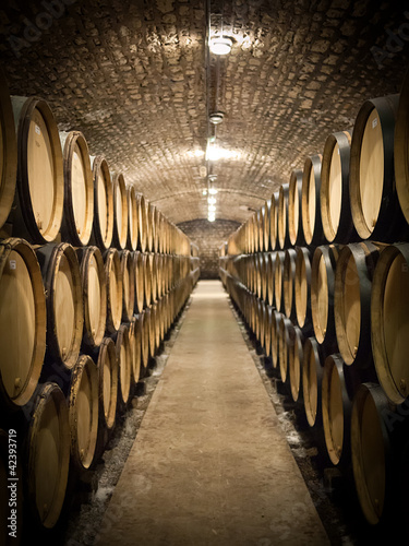 Poster Barrels in wine cellar
