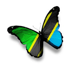 United Republic of Tanzania flag butterfly, isolated on white
