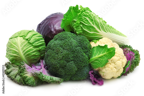 collection cabbage