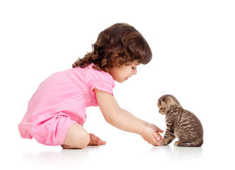 funny child playing with Scottish kitten