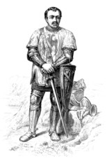 Warrior - 14th (Duguesclin's armorials)