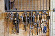 Harness Racing Equipment