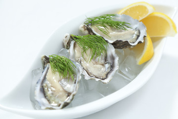 Fresh river oysters