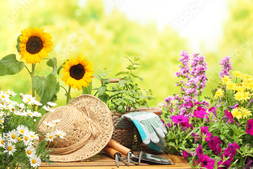 Gardening - 42421114