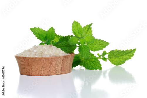Spa Salt and Fresh Mint Leaves