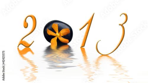 2013, galet et orchidée orange