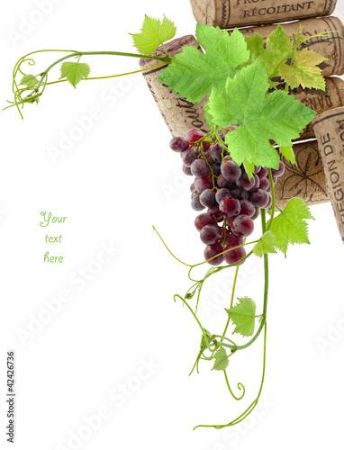 vigne ,grappe de raisin, bouchons de liège