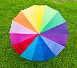 Colorful umbrella on grass