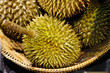 Durian Thai Fruit