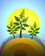 summer birch tree, vector
