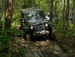 jeep pris dans la boue, en forêt - 42437504