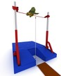 tortoise competing in pole vault