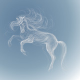 White horse / Vector sketch of fairy unicorn
