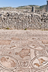 Hercules Works House at Volubilis, Morocco