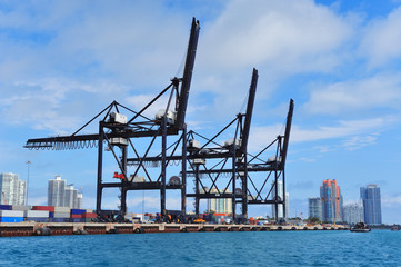 Miami harbor