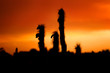 Silhouetted cactus at sunset