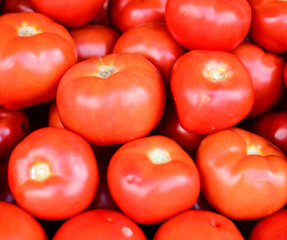 Fresh group of tomatoes