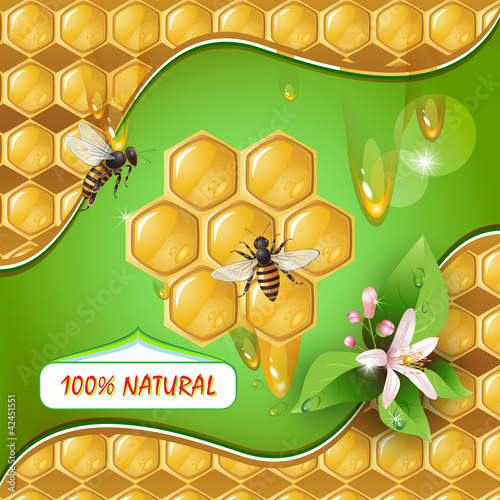 Background with bees, honeycomb and flower