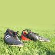 Schuhe auf dem Feld