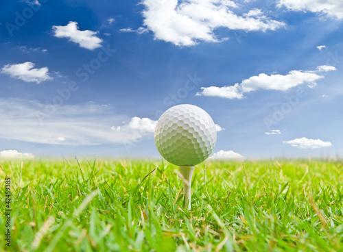 golf ball and tee grass