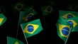 brazil_flag_crowd_3d_loopable