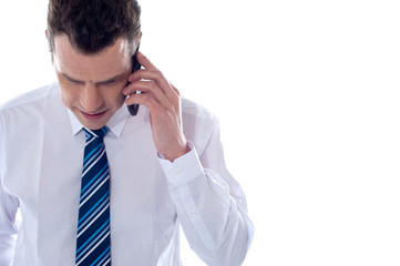 Business professional communicating on phone