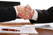 Handshake of business partners
